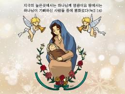 하나만평(경북하나신문 165호)