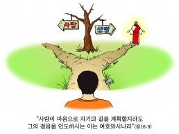 하나만평(경북하나신문 166호)