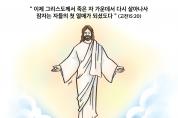 하나만평(경북하나신문 181호)